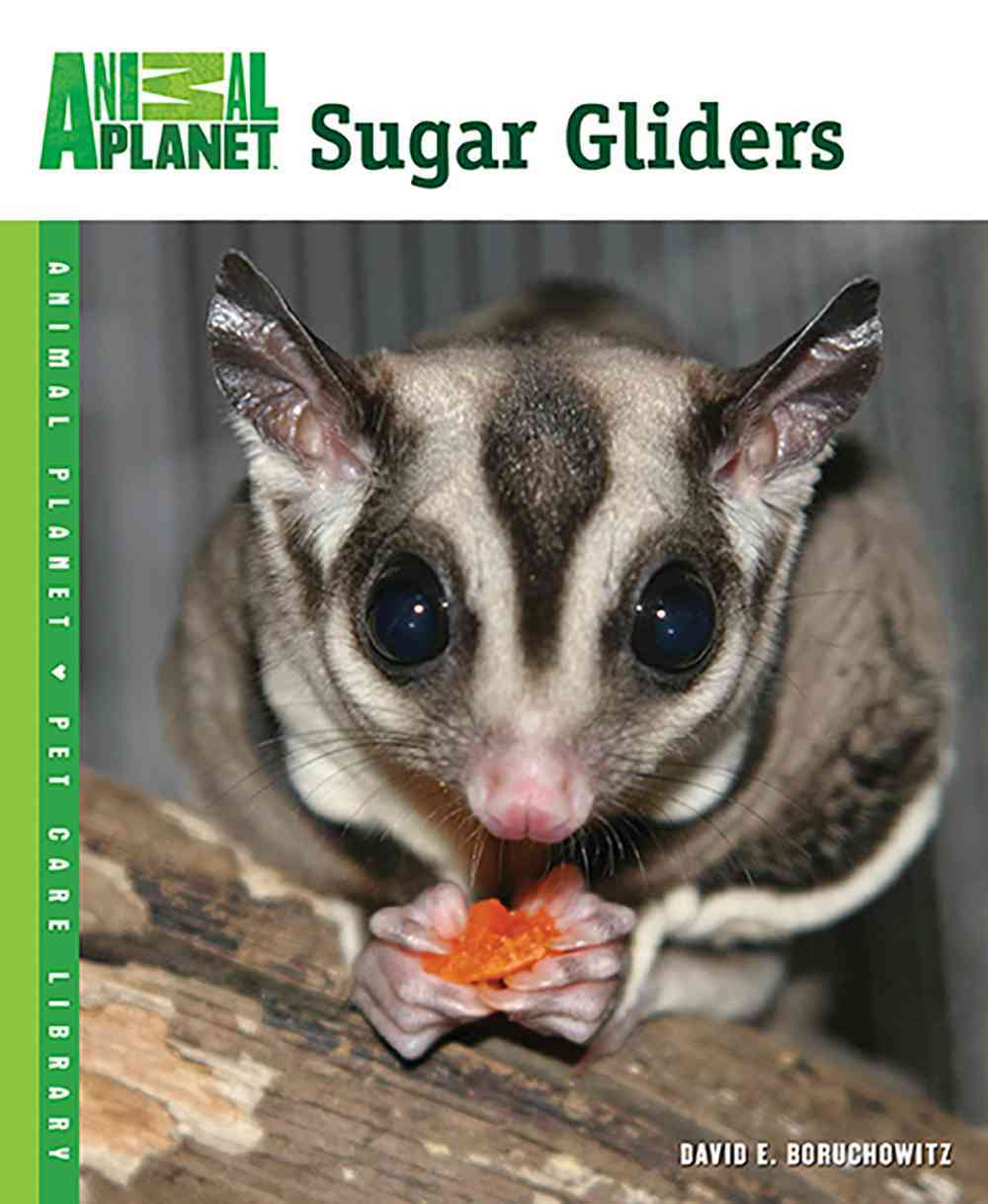 Sugar Gliders By Boruchowitz, David E.